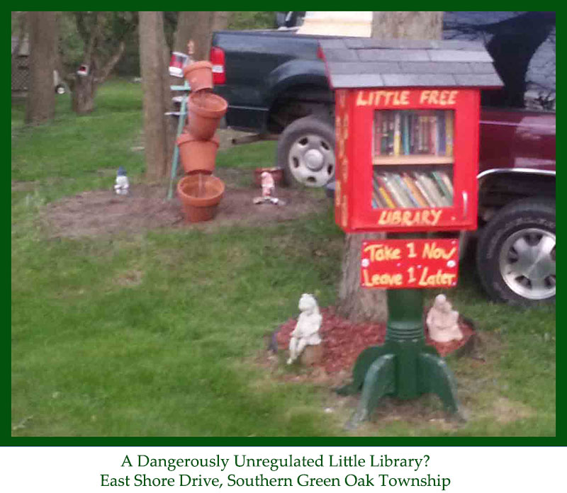 Little Library Dangerously unregulated cropped 800w